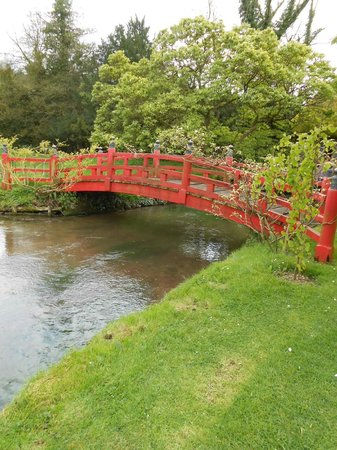 Heale Gardens: Bridge