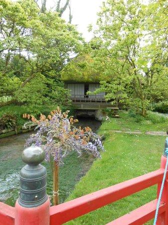 Heale Gardens: Bridges