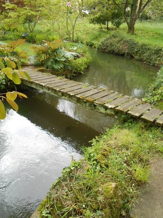 Heale Gardens: Typical Bridge over Avon River