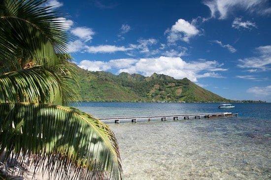 Fare Vaihere : Blick in die Opunohu Bay