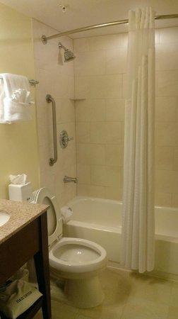 Holiday Inn Orlando – Disney Springs Area: The bathroom