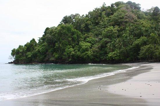 Tulemar Bungalows & Villas : The beach at Tulemar