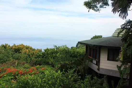 Tulemar Bungalows & Villas: Just one of the views from our bungalow.