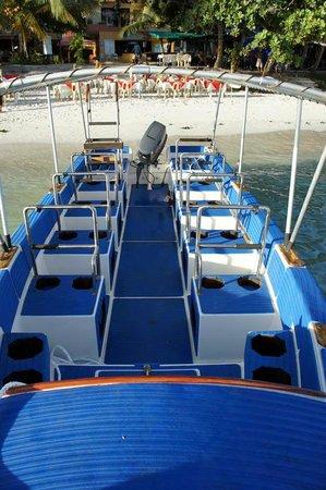 Philippine Fun Divers, Inc. : Hayabusa speedboat for 8 divers