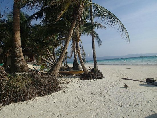 The Palms of Boracay : Beach - short stroll from unit