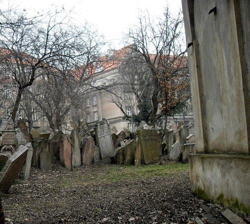 Old Jewish Cemetery: se pone en evidenciael poco espacio que les dejaron a los judíos,que superpusieron laslapidas