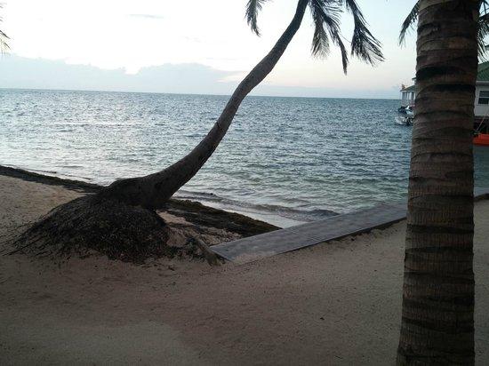 Villas At Banyan Bay: View of the water