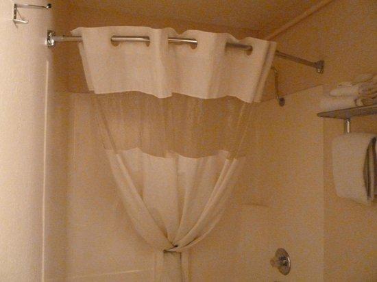 Americas Best Value Inn: shower curtain