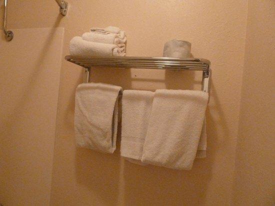 Americas Best Value Inn: towels