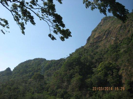 Laguna de San Carlos: Cerro Picacho