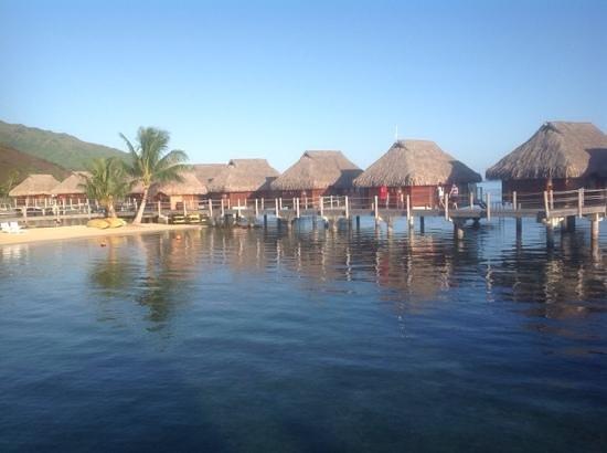 Manava Beach Resort & Spa - Moorea : Not too shabby, hey!