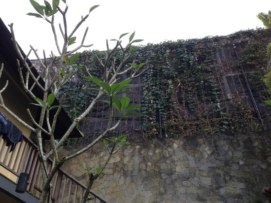 Komaneka at Bisma: The constructions directly behind our villa