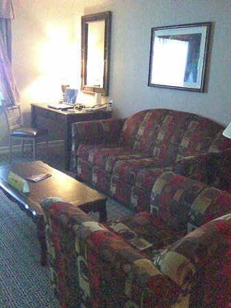 Tuscany Suites & Casino: couch area