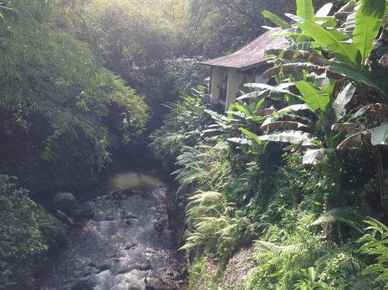 Komaneka at Bisma: Spa at Bisma - by the river