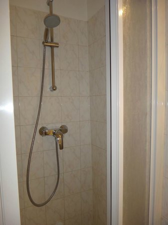 D'win Hotel: shower booth