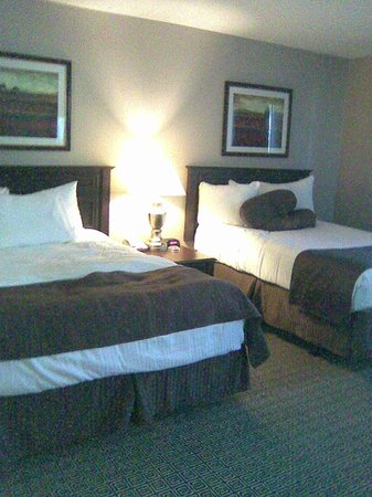 Tuscany Suites & Casino: queen beds