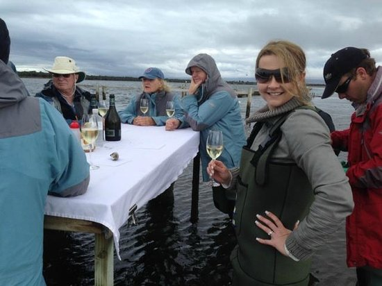 Saffire Freycinet: Oyster Farm