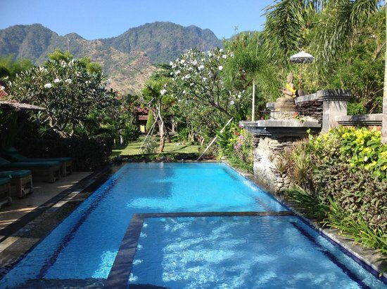 Taruna Homestay: Pool looking toward the mountains at the front of the hotel