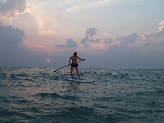 Sarasota Paddleboard Company: Sunset surf session!