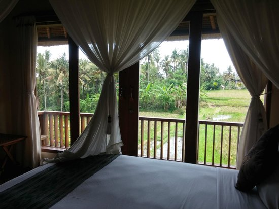 Biyukukung Suites and Spa: view from my room