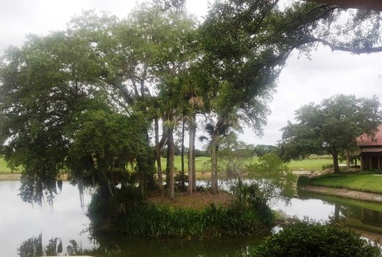 Villas of Grand Cypress: View from the porch