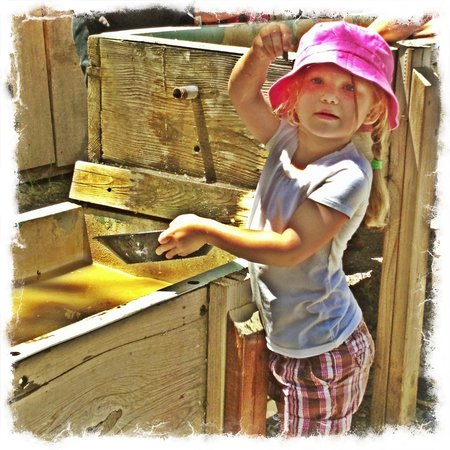 Columbia State Historic Park: Pannig for Gold and Gems!