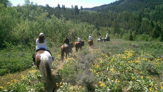 Bagley's Teton Mountain Ranch: Great Ride