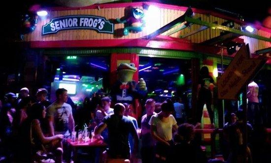 Senior Frog's
