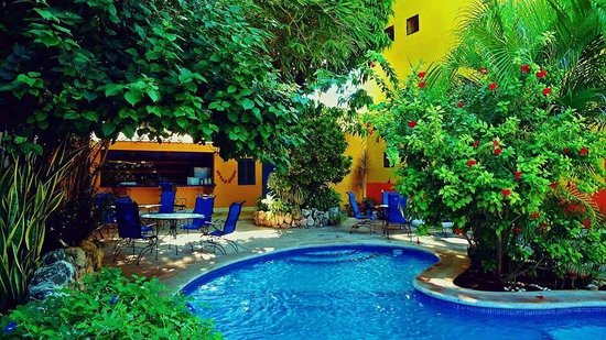 Lo Que Hay Cafe: Looks like paradise!