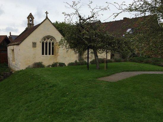 Glastonbury Abbey: Abbey