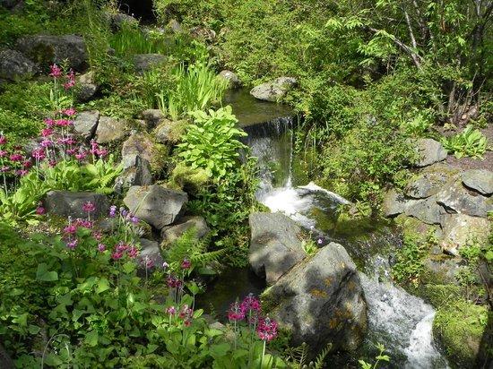 Picture Of Royal Botanic Garden Edinburgh Edinburgh Tripadvisor