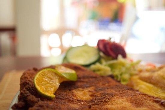 Casa Morales Santa Fe: Un poco de pescado de la región,la mejor sazón!