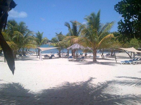 The Verandah Resort & Spa : Rasta Beach Bar view