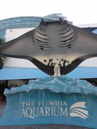 The Florida Aquarium : Ray Statue in front of Aquarium