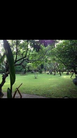 Matahari Bungalow Bar & Restaurant : Garden view from deluxe room