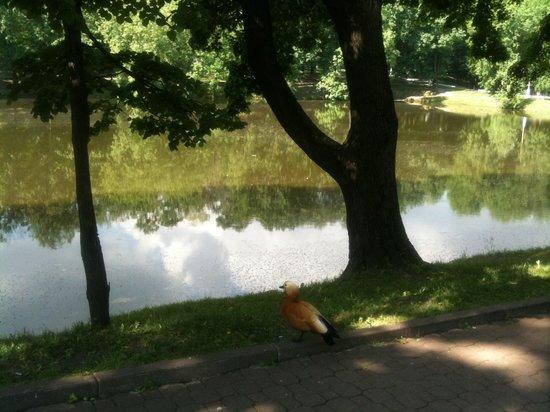 Лефортово Дворцово-Парковый Ансамбль