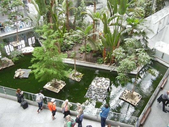 Estación de Atocha: Вид с верхнего этажа вокзала