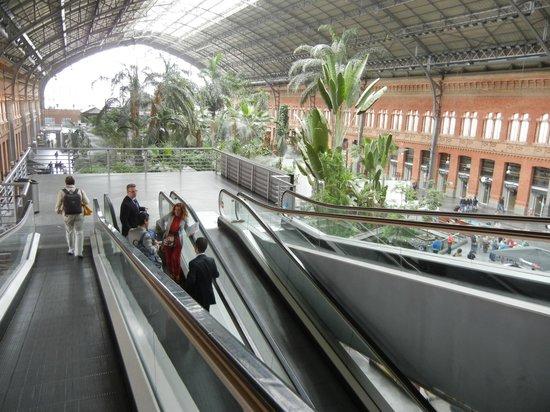 Estación de Atocha: Травелаторы