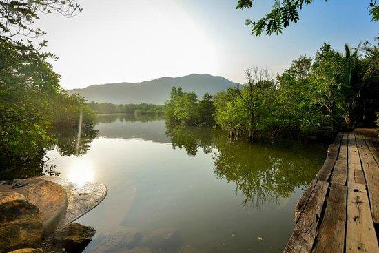 The Spa Resort Koh Chang: Serene Mangrove Forrest for Kayak