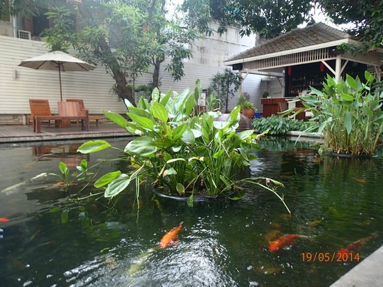 Feung Nakorn Balcony Rooms & Cafe : Next to restaurant