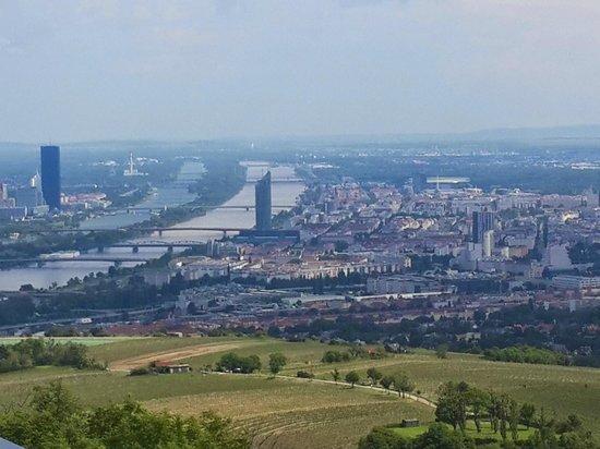 Kahlenberg: vista1