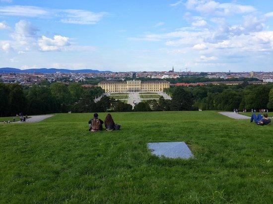 Gärten von Schönbrunn: foto2