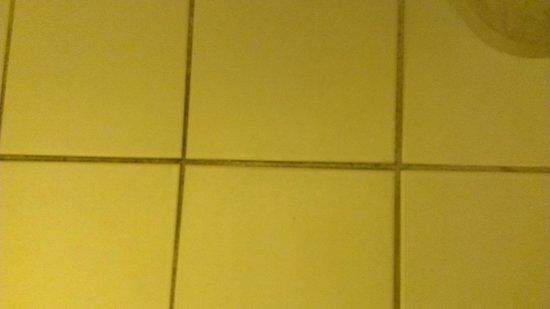 Days Inn Neptune Beach: Water leakage around toliet in bathroom