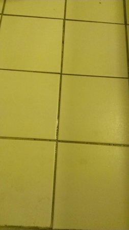 Days Inn Neptune Beach: More water leakage in tiles
