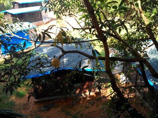 Villa Fatima Beach Resort: View from balcony