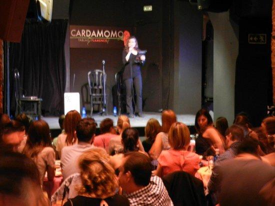 Cardamomo Tablao Flamenco : Начало шоу