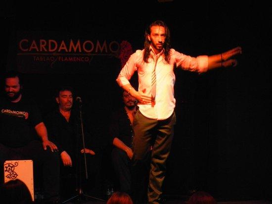 Cardamomo Tablao Flamenco : Солист