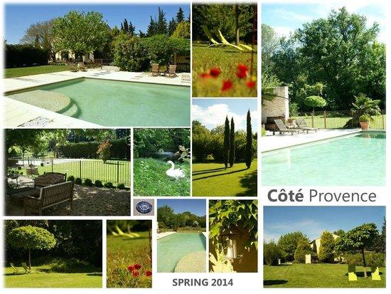 Côté Provence : SPRING 2014