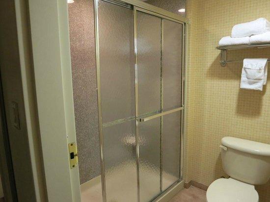 Homewood Suites by Hilton Edgewater - NYC Area : シャワーのみだが、シャワーブースが大きいのは便利。タオルも十分にある。