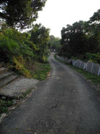 Cherrapunjee Holiday Resort: Path leading to hotel